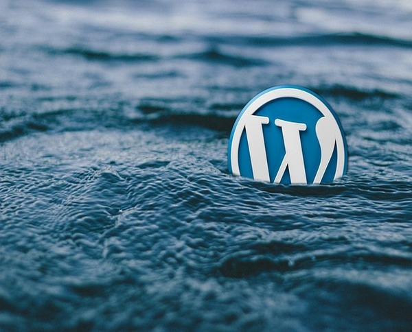 WordPress installieren in 5 Minuten